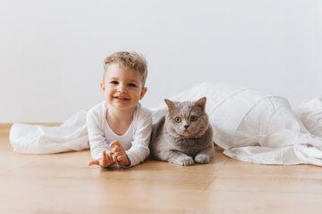 Jakie zwierzątko dla dziecka?  Pierwsze zwierzę w życiu dziecka