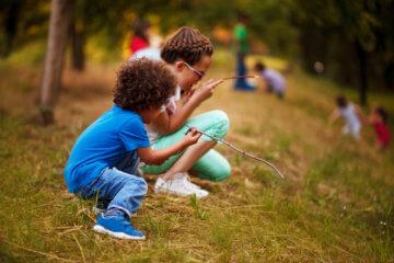 Wczesna edukacja alternatywna – leśne przedszkole